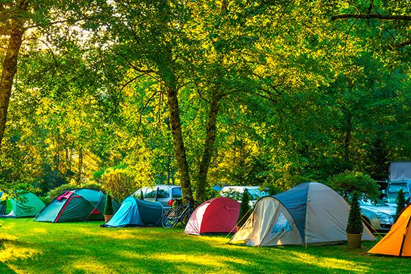 Camping Insel Bamberg - Bug